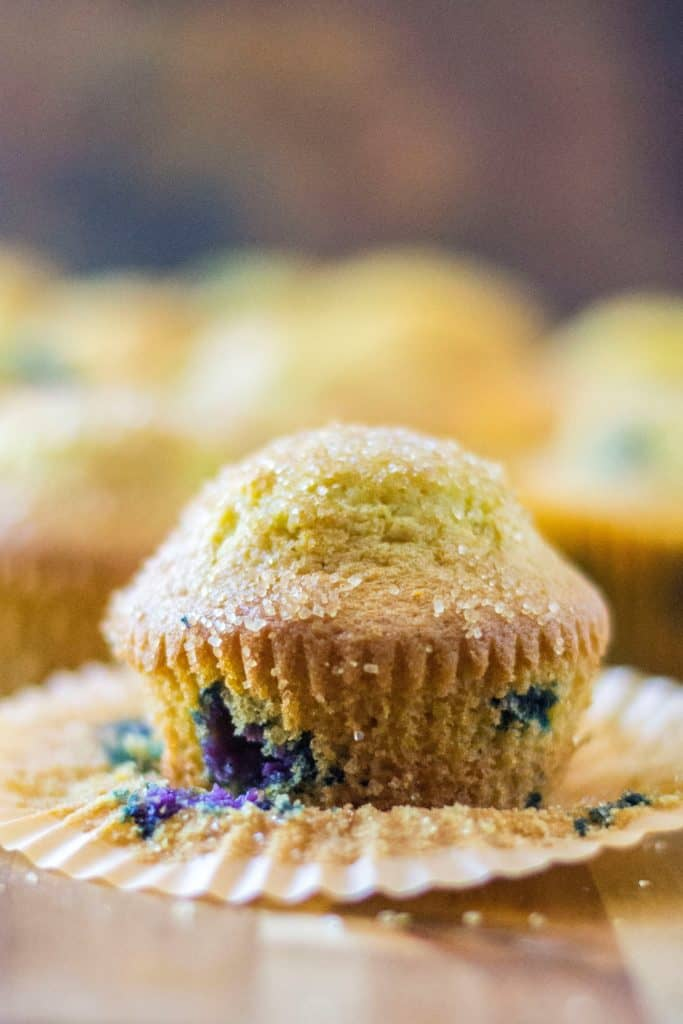 Blueberry Orange Muffins single muffin