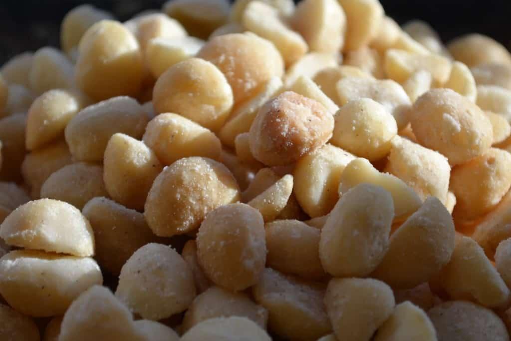 White Chocolate Cranberry Nut Fudge