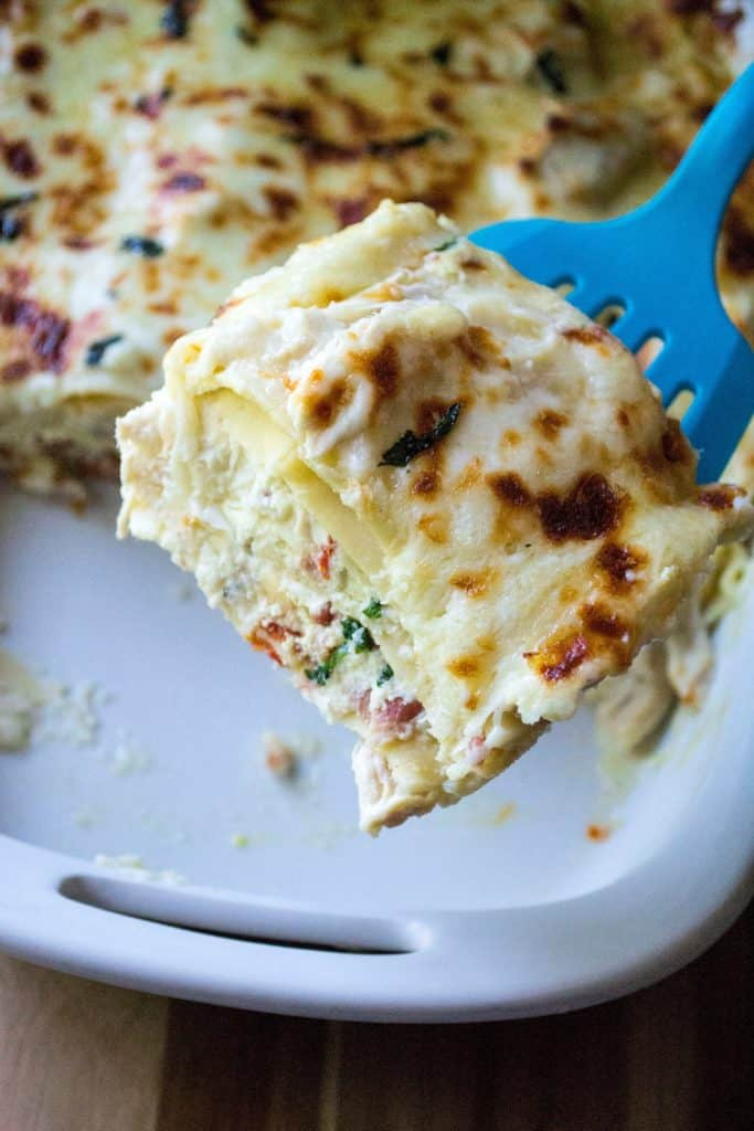 White Chicken Lasagna is rich with sharp cheeses, a creamy alfredo sauce and packed with basil, sun-dried tomatoes and tons of garlic flavor. Comfort food at it's best, this White Chicken Lasagna with alfredo is hearty, delicious and sure to be your families new favorite easy white chicken lasagna recipe. Perfect easy chicken recipe!