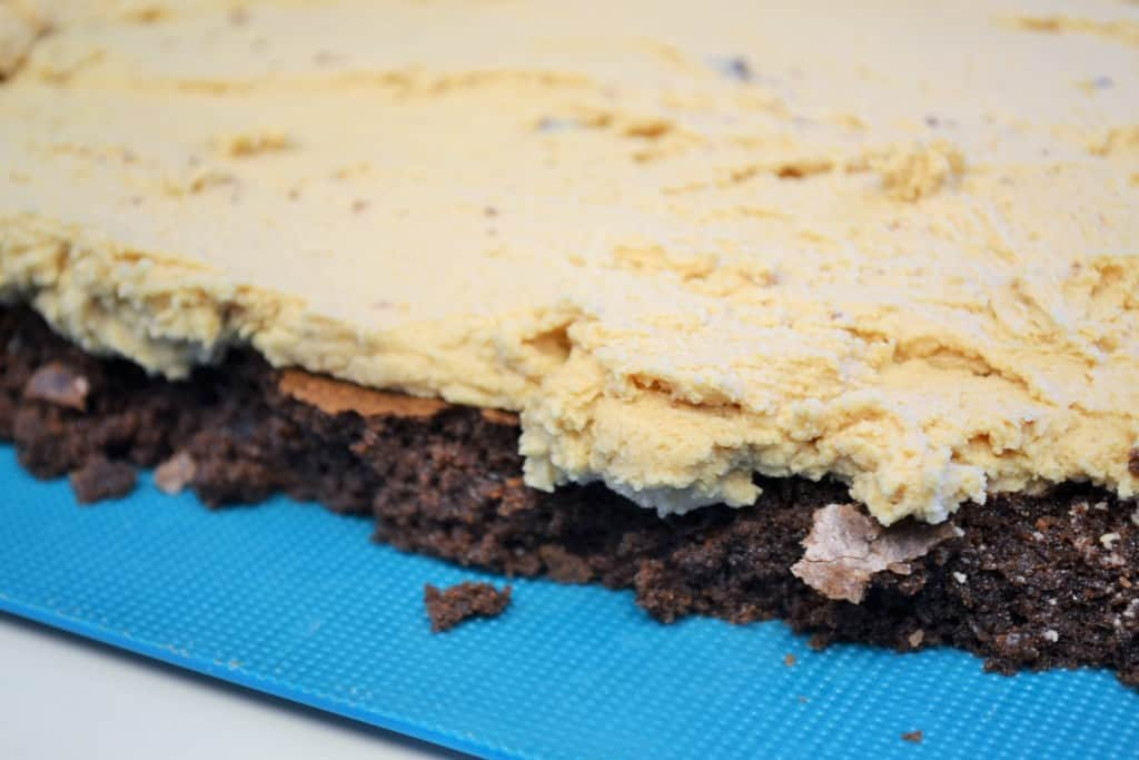 Chocolate Peanut Butter Layer Brownies