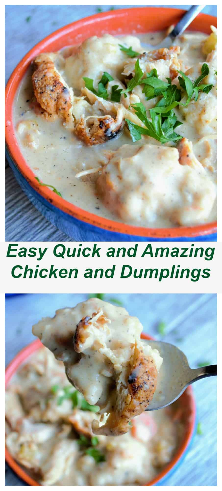 The BestChicken and Dumplings | The BestChicken and Dumplings is a hearty blend of roasted chicken and plump dumplings in a perfectly seasoned creamy soup. | Pack Momma | https://www.awickedwhisk.com