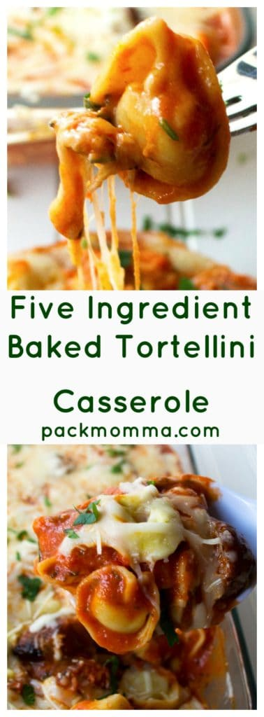 Five Ingredient Baked Tortellini Casserole | This Five Ingredient Baked Tortellini Casserole is the ultimate comfort food. A hot, hearty, delicious meal with only five ingredients and in 30 minutes! | A Wicked Whisk | https://www.awickedwhisk.com