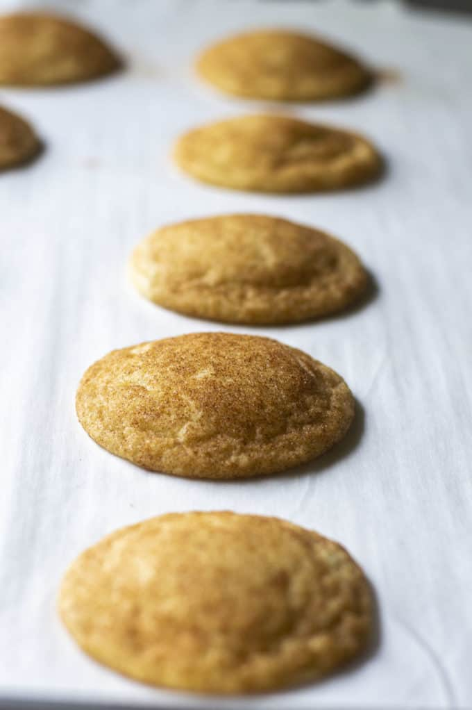 baked chewy snickerdoodle