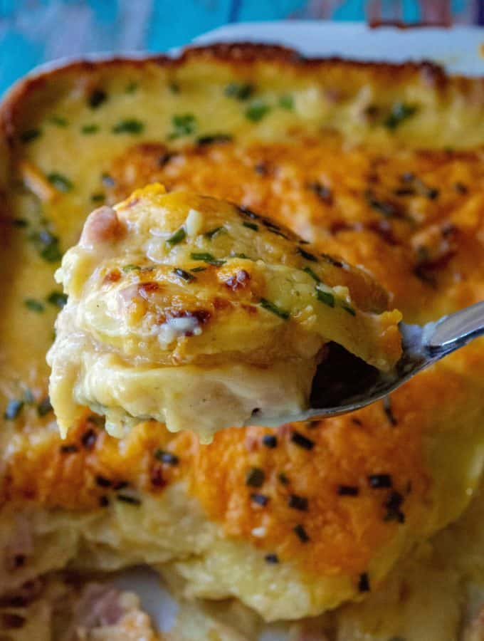 Cheesy Scalloped Potatoes and Ham is the ultimate in cheesy potato comfort food recipe.  Made with tons of creamy cheese, sliced potatoes and chunks of ham, this Cheesy Scalloped Potatoes and Ham recipe is the perfect make ahead dinner or the best every day meal. | A Wicked Whisk